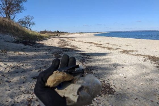GEMs Op. Sparkle: Beach Cleanup